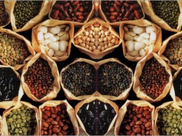 Juste des semences
